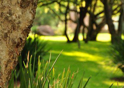 Alpetra-Nature-Reserve-Garden-05